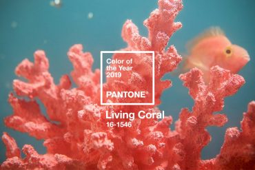 Cor do Ano Pantone – 2019